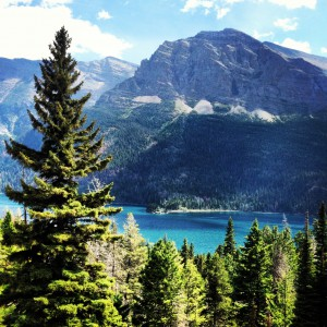 The Fulbright-MTPTrain participants enjoyed Glacier National Park in Montana over the weekend.